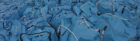 Blue bags containing radioactive material in Fukushima