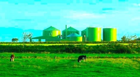 Sottoprodotti Agricoli Industriali - focus normativo